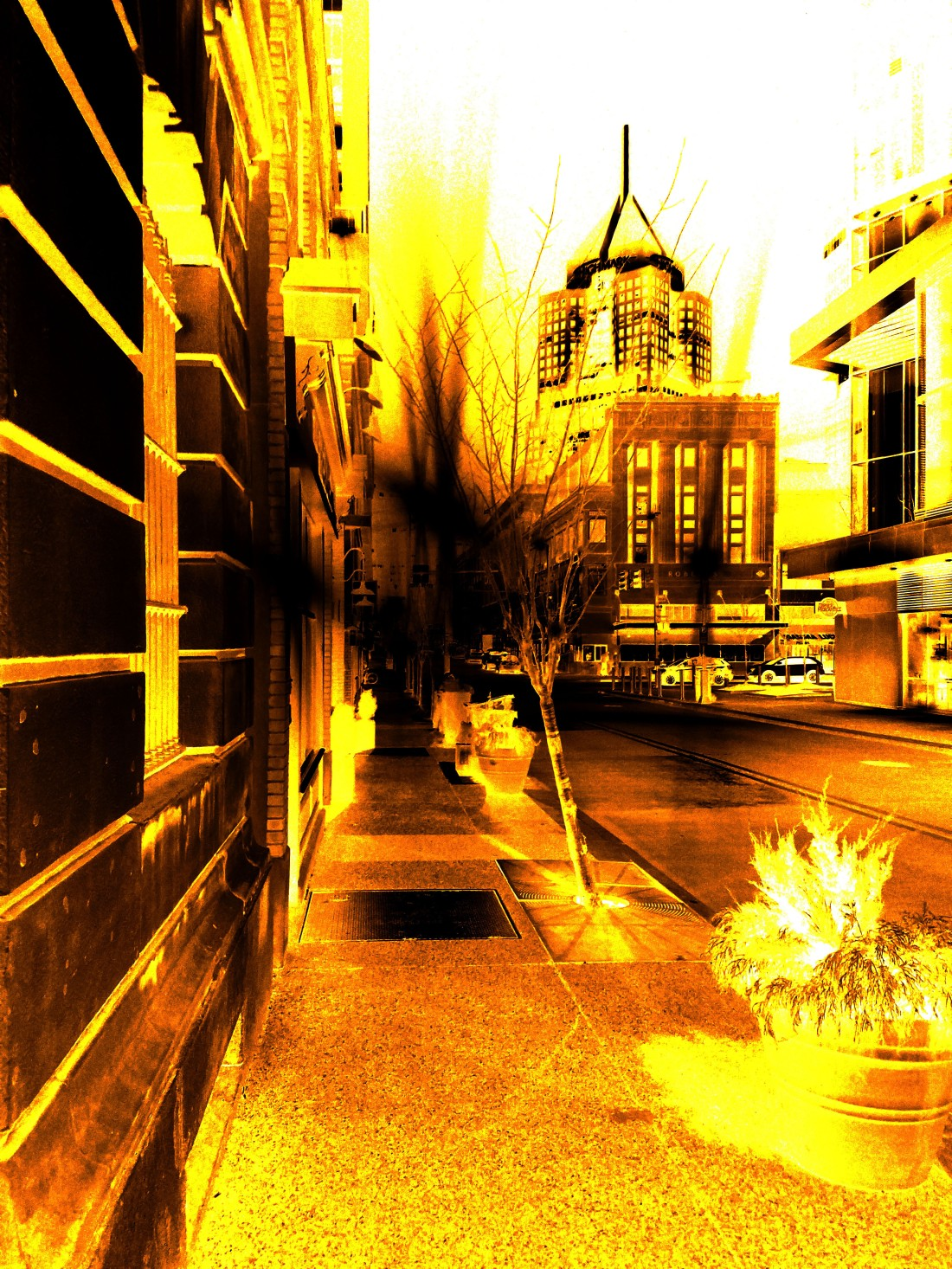 Yellow City (1)